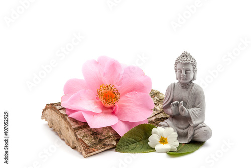 Poster, Tablou Stones and trunk whit flower and Buddha