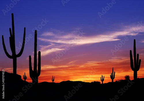 Poster Arizona Colorful Sunset in Wild West Desert of Arizona with Cactus