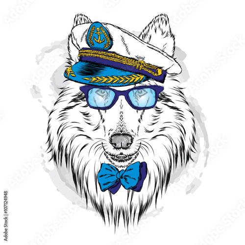 sliczny-pies-w-czapce-kapitanskiej-uroczy-szczeniak-ilustracji-wektorowych-kollia