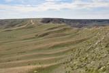 Steppe in spring. Nature landscape. Mangyshlak Peninsula, Kazakhstan.