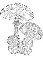 Mushroom coloring vector for adults