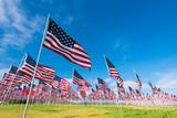 Field of American Flags - 107274907