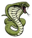 King Cobra Snake - 107323348