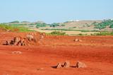 Minorca, isole Baleari: sabbia rossa e campi di grano sul sentiero per Cala Pregonda, la baia simile al pianeta Marte, il 15 luglio 2013