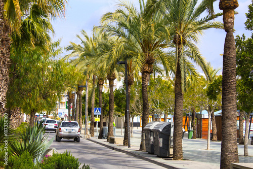Promenade along the beach and sea with palm trees and cars
