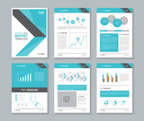 company profile ,annual report , brochure , flyer, layout template,page layout,and business info chart element, A 4  ,vector editable 