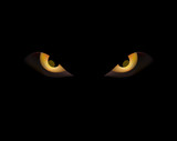 evli angry eye on dark black background
