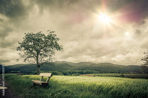 Cichy i nostalgiczny krajobraz do medytacji