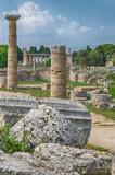 Paestum archaeological  site. Italy