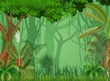 Illustration of forest background  - 107547332