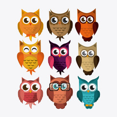 Owl icon design, vector illustration
