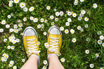 Yellow sneakers decorated with daisies