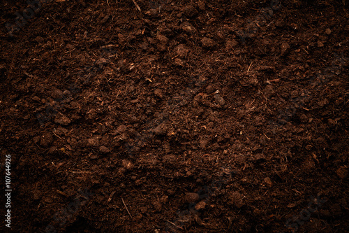 Foto Murales Soil texture