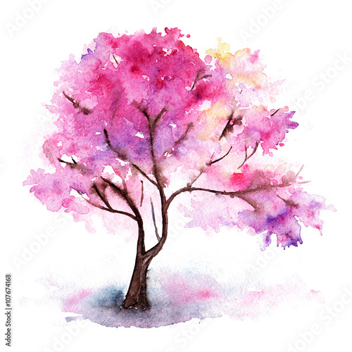 Watercolor single pink cherry sakura tree isolated © Silmairel