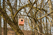 Obrazy na płótnie, fototapety, zdjęcia, fotoobrazy drukowane : Birdhouse on a tree in spring