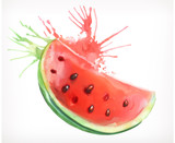 Watercolor painting, watermelon, vector illustration, isolated on a white background