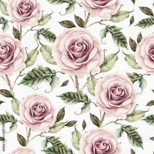 Pattern with watercolor realistic rose. - 107739190