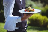 Handsome waiter holding a plate