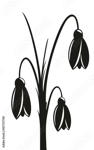 Drawing of spring flowers.