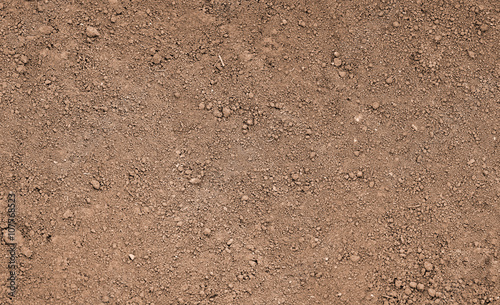 Foto Murales Brown ground surface. Close up natural background
