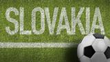 Slovakia Ball in a Soccer Field