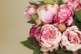 Fototapety Pink Peonies bouquet  with copy space