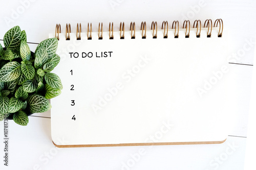 To do list on note book paper on white wood table background Poster