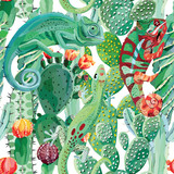 Chameleon i kaktus bez szwu tła