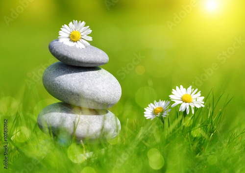 Green grass with stones and daisies, soft focus. Spa concept © vencav