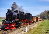 Rasender Roland auf Rügen - 107852316