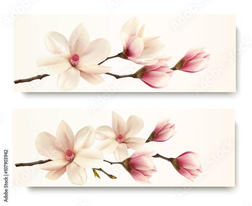 Zdjęcia na płótnie, fototapety, obrazy : Two magnolia banners. Vector.