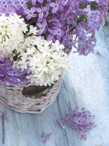 Foto op Canvas Lilac lilac flowers