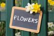 Obrazy na płótnie, fototapety, zdjęcia, fotoobrazy drukowane : Flowers flower daffodil daffodils spring garden with sign board