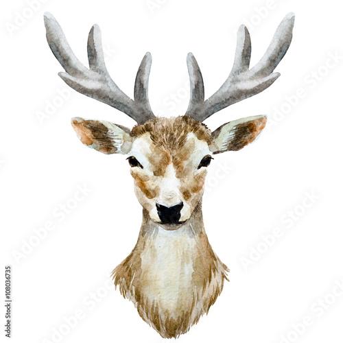 Watercolor hand drawn deer - 108036735