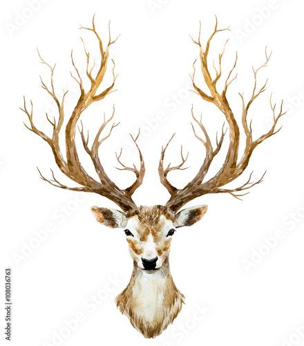 Watercolor hand drawn deer - 108036763