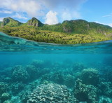 Above and below water surface with lush coast and coral reef underwater split by waterline, Huahine island, Maroe bay, Pacific ocean, French Polynesia