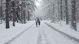 Two Happy Women Walking In Winter Forest