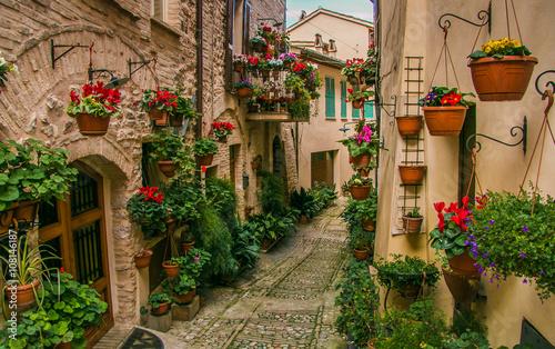 Vicolo medievale decorato con fiori nel centro storico di Spello