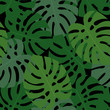 Cotton fabric Tropical monstera leaves seamless pattern on black background. Green palm leaves background. Trendy Jungle illustration. Design for fabric and decor.