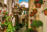 Spello: il borgo dei fiori