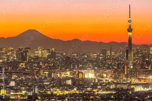 Poster Tokyo Sunset