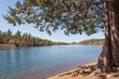 Scenic Arizona Mountain Lake