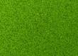 Leinwanddruck Bild - Perfekter Rasen