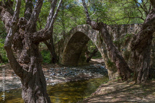 Tzelefos Picturesque Medieval Bridge in Troodos, Cyprus