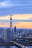 Tokyo city with tokyo sky tree at sunset time