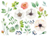 Fototapety Set of floral elements on white background