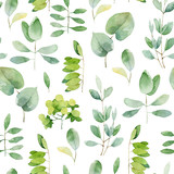 Seamless herbal pattern