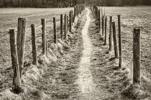 footpath - 108357185