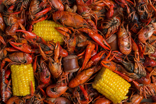 Boiled Crawfish, Corn on the Cob, and Sausage Link