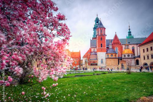Zdjęcia na płótnie, fototapety na wymiar, obrazy na ścianę :  Zamek Królewski na Wawelu